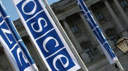 Предстоит долгий путь: В ОБСЕ высказались касательно мира на Донбассе