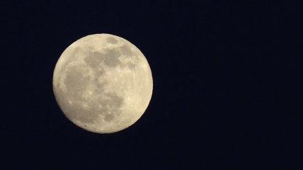 В Сети опубликовали видео черного НЛО на фоне Луны