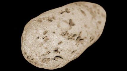 "Космический аппарат ""Чанъэ-2"" пролетел около астероида Таутатис"
